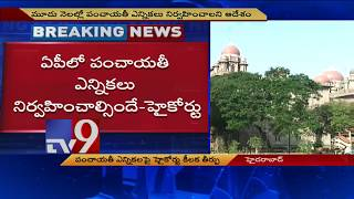 HC orders AP government to conduct panchayat elections within 3 months