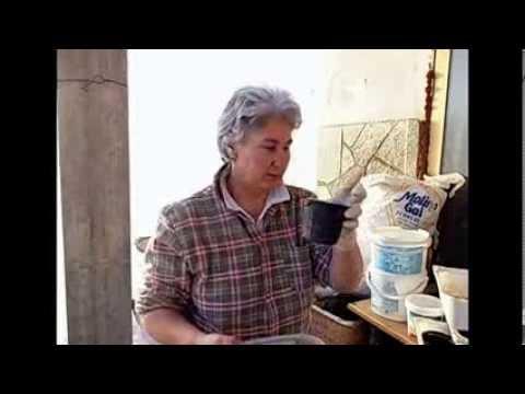 Ortoluna: Semina Pomodoro 1