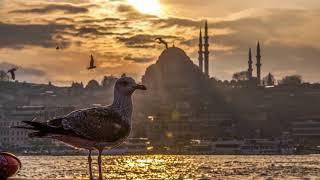 Turkish Instrumental Music