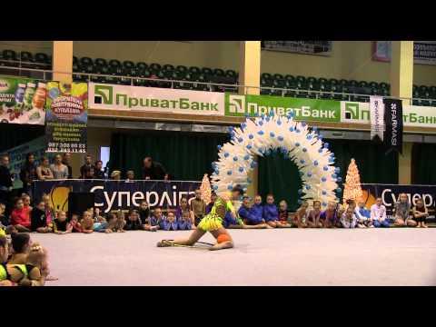 «Зимняя сказка-2012», показательные выступления