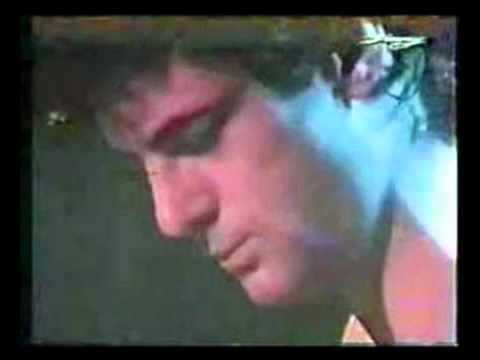 Peter Hammill - Shingle Song