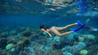 BEST SNORKELING IN THE WORLD | MALDIVES