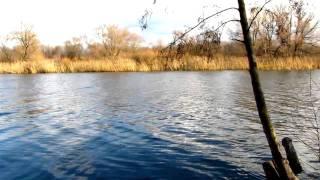 весенняя рыбная ловля  воронеж