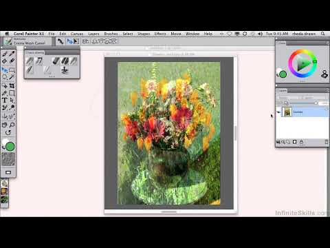 Managing Layers in Corel Painter X3 by Inifnite Skills