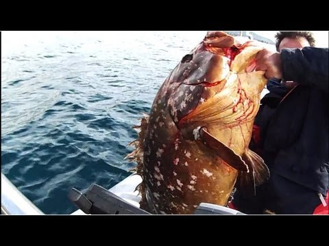 JIGGING-7 grouper  ΡΟΦΟΣ ΕΝΑ ΨΑΡΙ ΠΟΛΥ ΜΕΓΑΛΟ sotos fishing.wmv