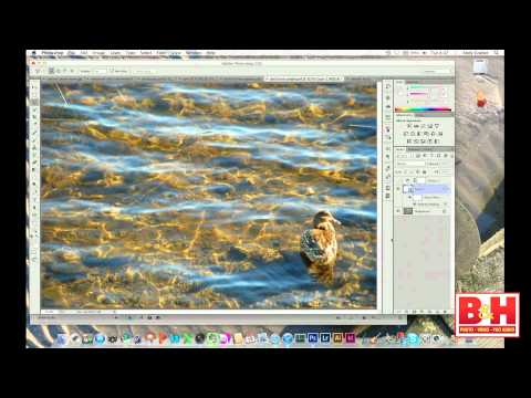 An Introduction to Photoshop CS6 - Learning the Basics of Photo Manipulation
