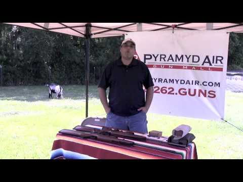 Ruger Air Hawk Elite vs. Ruger Air Hawk - are they really the same gun...?