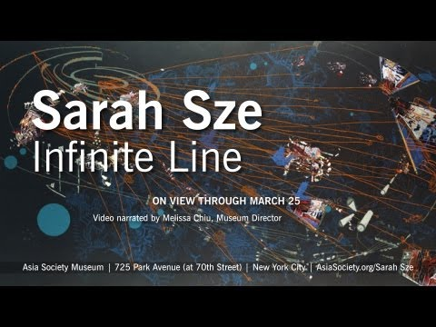 Artist Sarah Sze Crosses the  Line  at Asia Society Museum