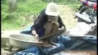 Xâm nhập vùng khai thác vàng Bồng Miêu_ Quảng Nam.wmv