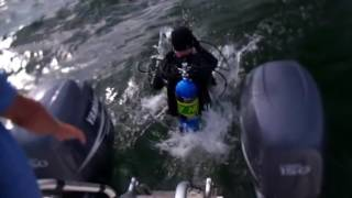 Scuba diver jumps off boat into water   Free HD Video Clips & Stock Video Footage!