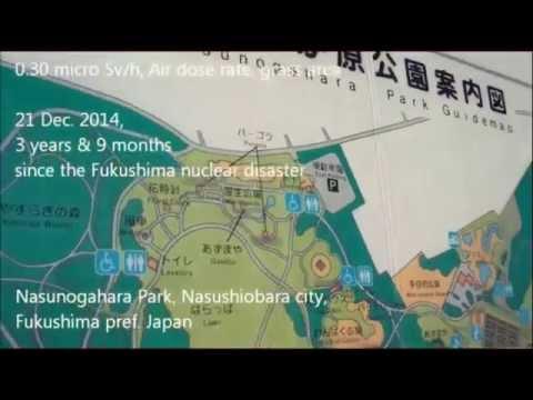 Fukushima 2/4/15: Construction of Radioactive Waste Facility Begins: Obama/Modi Nuclear Deals