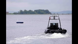 Demonstration of autonomous obstacle avoidance on a USV