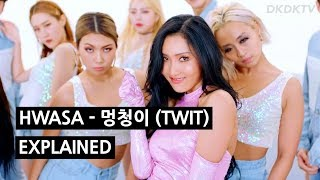 HWASA - 멍청이 (TWIT) Explained by a Korean