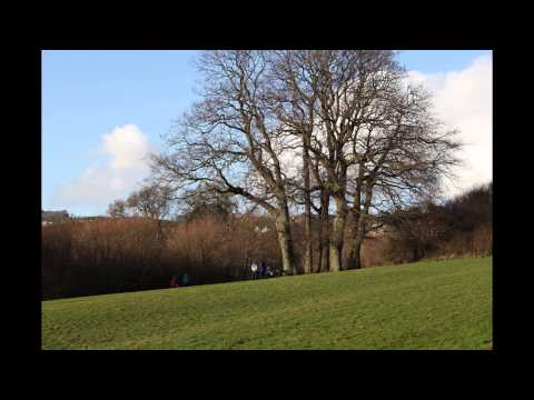 Teignmouth - Mules Park February 2016