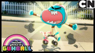 Darwin Finds A New Best Friend | The Third | Gumball | Cartoon Network