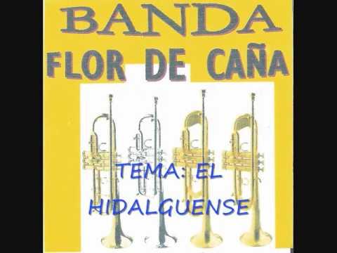 banda de viento flor de caña....tema: el hidalguense