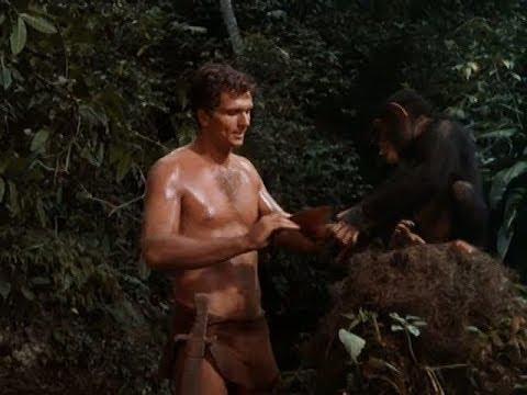 Tarzan:   Season 1