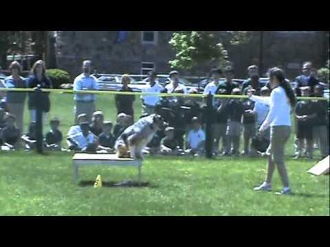 Kruisin Kanines Demo at Princeton Academy of the Sacred Heart