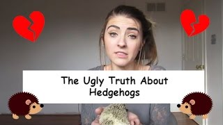 The UGLY Truth About Hedgehogs!
