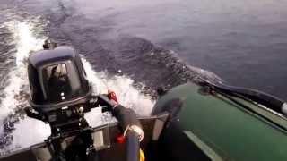 лодка колибри и мотор парсун 5.8