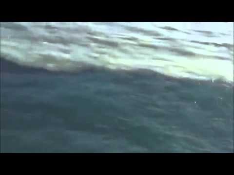 Ocean Indian Ocean Atlantique Indian And Atlantic Ocean
