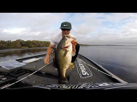 GoPro Hero 3+: Monster Bag of St. Johns River Bass! #ThreeFive