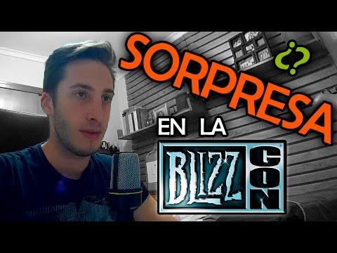 ¿Sorpresa en la BLIZZCON 2014
