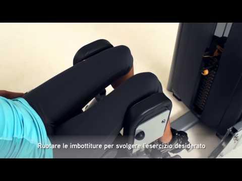 Matrix Fitness Italia: VERSA HipAdductorAbductor