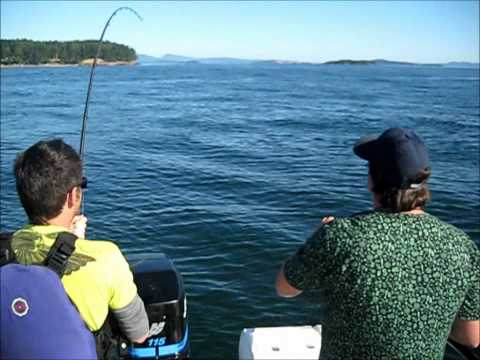 Sidney, BC Salmon Fishing