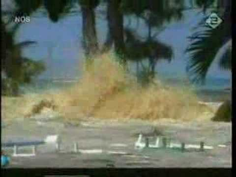 Tsunami in India A Wave of Terror