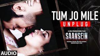 TUM JO MILE UNPLUGGED Full Audio Song | SAANSEIN | Rajneesh Duggal, Sonarika Bhadoria