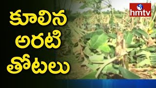 Routhupalem Farmers in Huge Loss Due to Phetahi | Kakinada  | hmtv