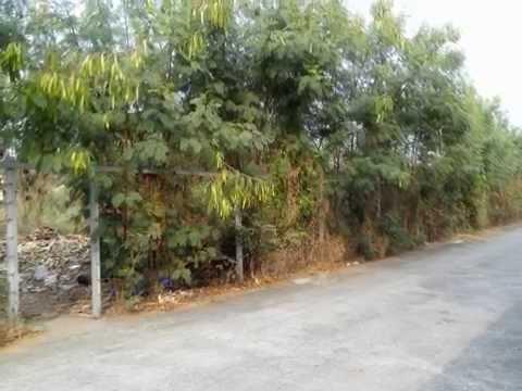 ที่ดิน วิภาวดี 60 – Land Vibhavadi Rangsit Soi 60, Bangkok – for Sale