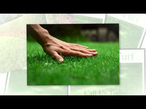 Fertilization & Weed Control Frisco TX | Call 972-992-5296
