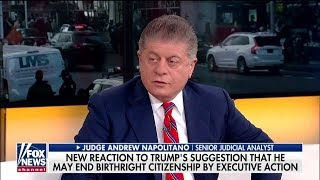 Judge Nap: Constitution Says 'Once Here, a Baby Born Is an American Citizen'