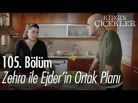 Zehra ile Ejder'in ortak planı - Kırgın Çiçekler 105. Bölüm