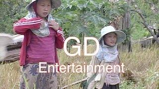 Ua Teb #8 Nyob Teb Chaws Los Tsuas from GD Entertainment