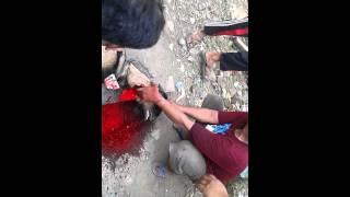 Pemotongan hewan qurban di masjid annur bekasi