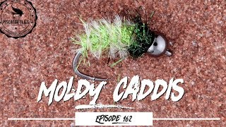 Tying a Moldy Caddis Pupa Trout Fly - Ep162 PF #piscatorFlies
