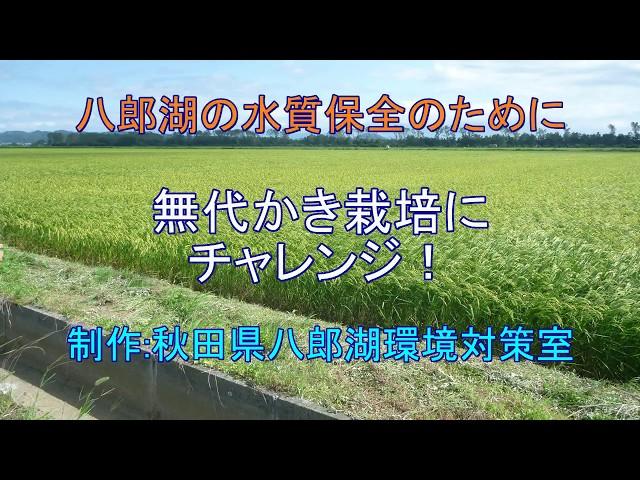 無代かき栽培にチャレンジの動画