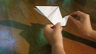 Instructions For An Origami Swan... With Two Heads