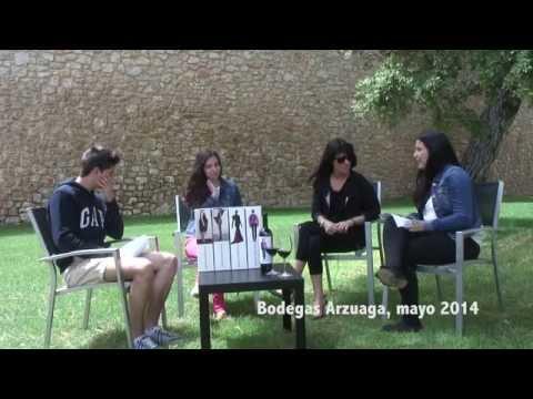 Entrevista a Amaya Arzuaga. Proyecto de Investigación en diseño gráfico. PIIESOCYL2014
