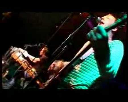 Zea - We Buried Indie Rock Years Ago