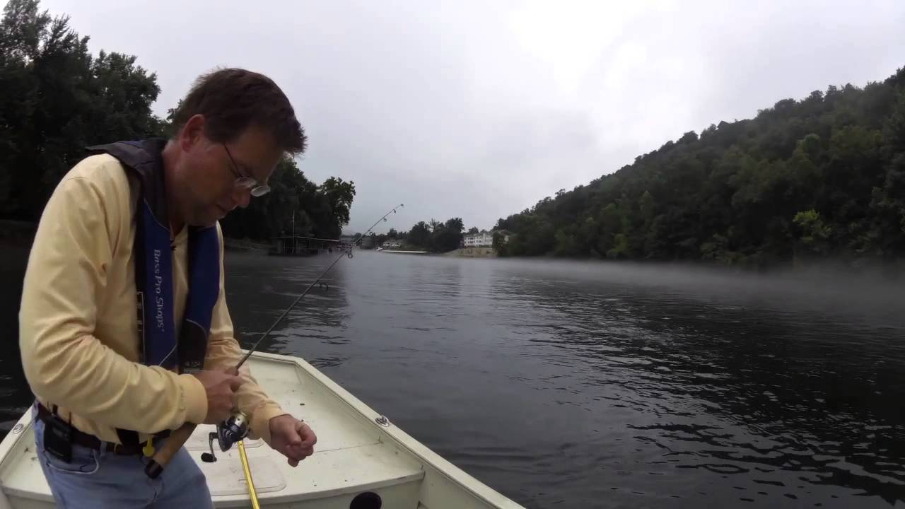 July 9th lake taneycomo fishing report fishing central for Lake taneycomo fishing