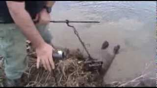 How to trap & catch beaver fast and simple with foothold trap