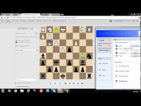 mükemmel at fedası, wayward queen attack alimallah.net chess club