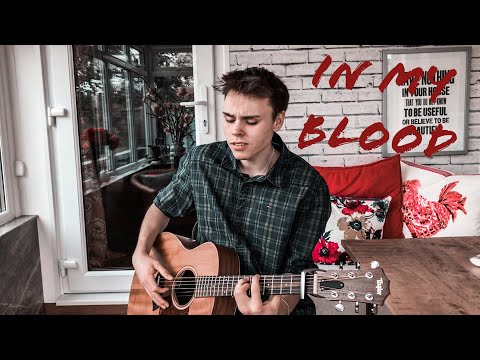Shawn Mendes - In My Blood - Acoustic Cover (Lyrics And Chords)
