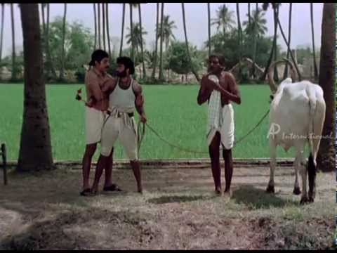 Sakalakala Vallavan - Kamala Hassan Fight Scene video