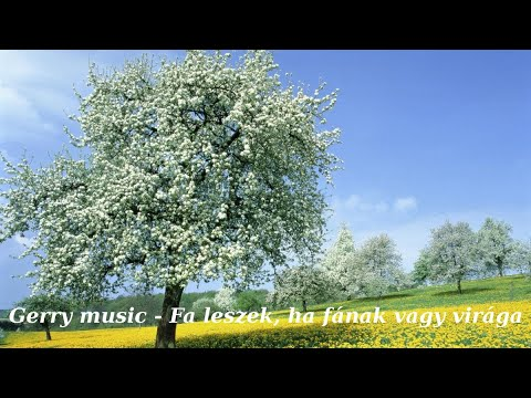 Gerry Music  -  Fa Leszek, Ha Fának Vagy Virága (Official Music Video)