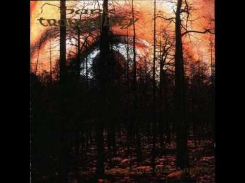 Dark Tranquillity - Shadowlit Facade